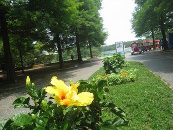 14長い公園植物園.jpg