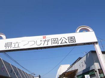 つつじが丘公園1.jpg