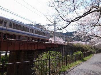 山中渓2.jpg